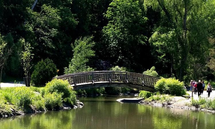edwards-garden-bridge1